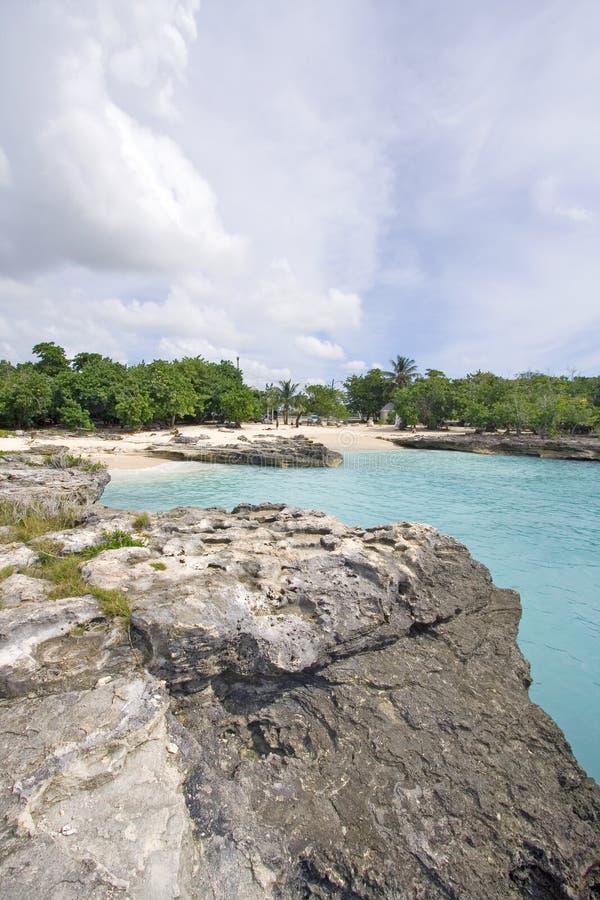 kajmanu falez korala wyspy obraz royalty free