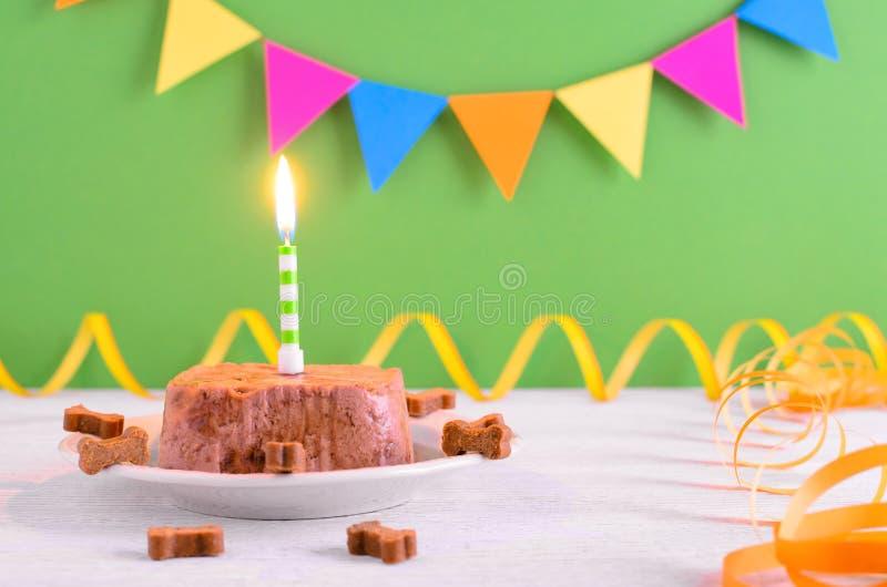 Kaka för lycklig födelsedag för hund från våta mat och fester med stearinljuset på bakgrund för grönt parti arkivbild