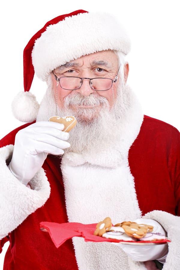 kaka som äter santa arkivbild