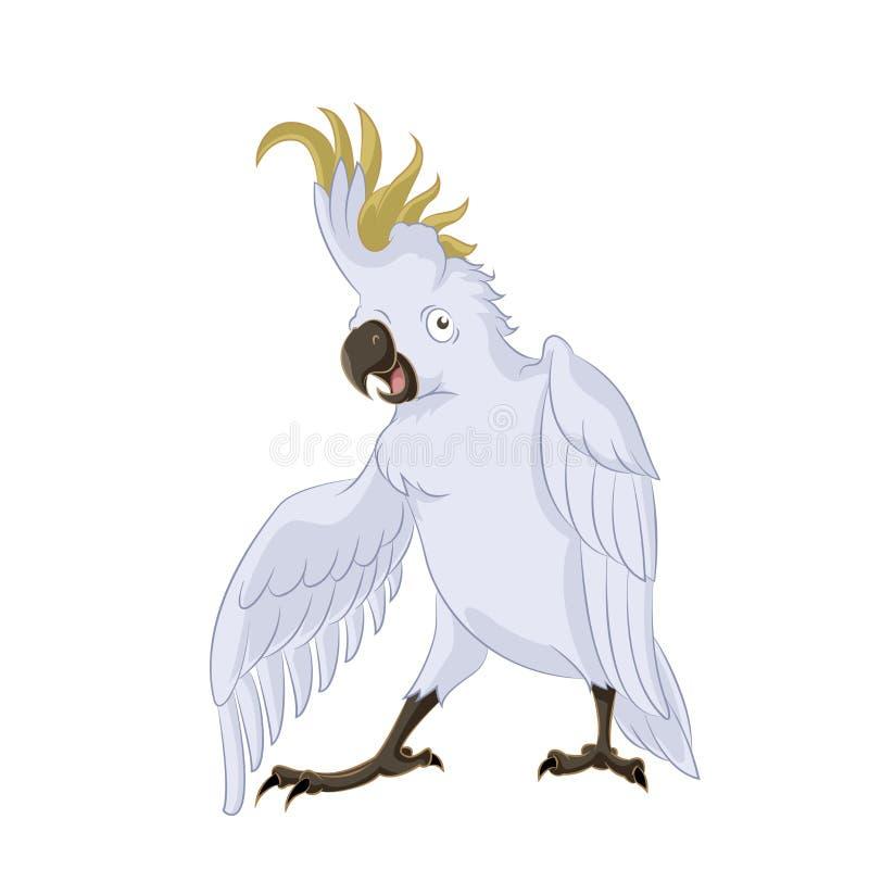 Kakadu, lizenzfreie abbildung