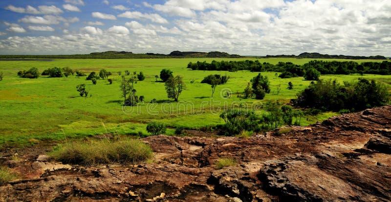 Kakadu national park. 2010 Billabong royalty free stock image