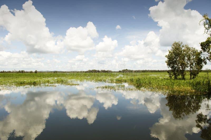 kakadu park narodowy obrazy stock