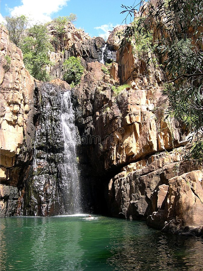 Kakadu waterhole royalty free stock image