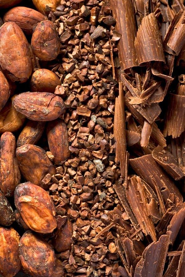 kakao zdjęcia royalty free