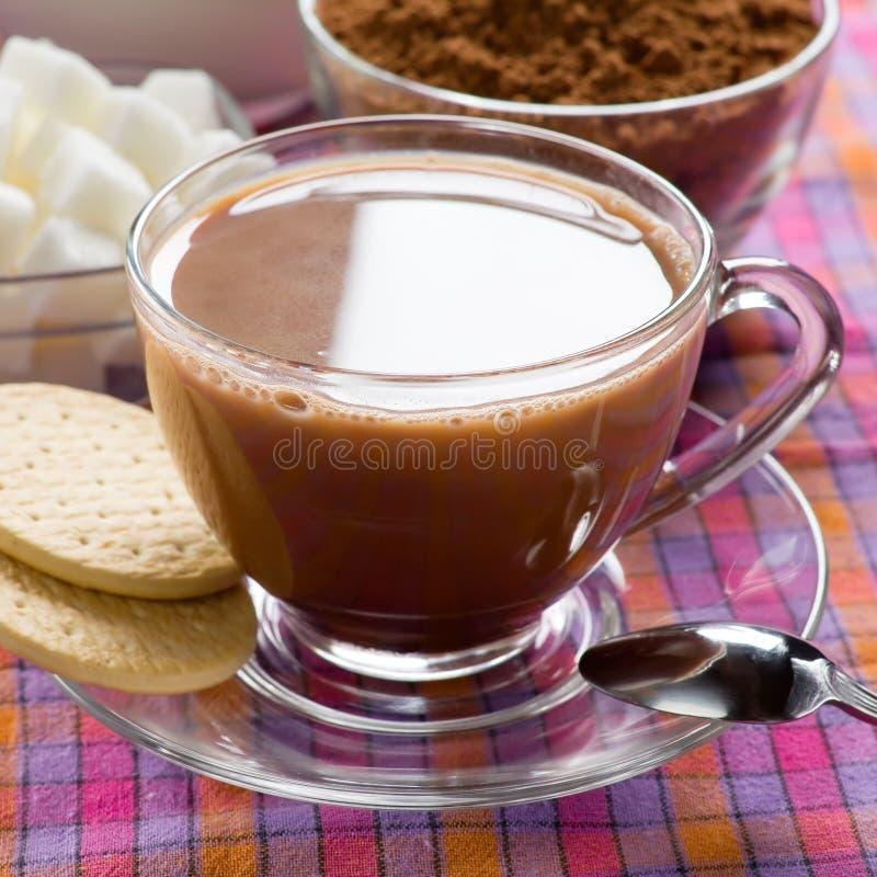 Kakao royaltyfri fotografi