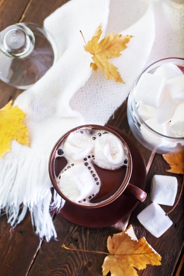 Kakao getrennt auf Weiß stockbilder
