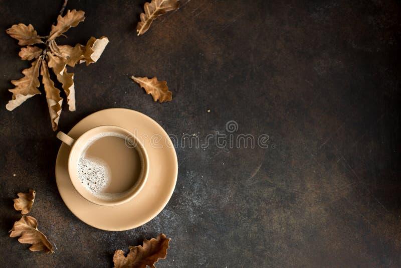Kakao i jesień liście obraz stock