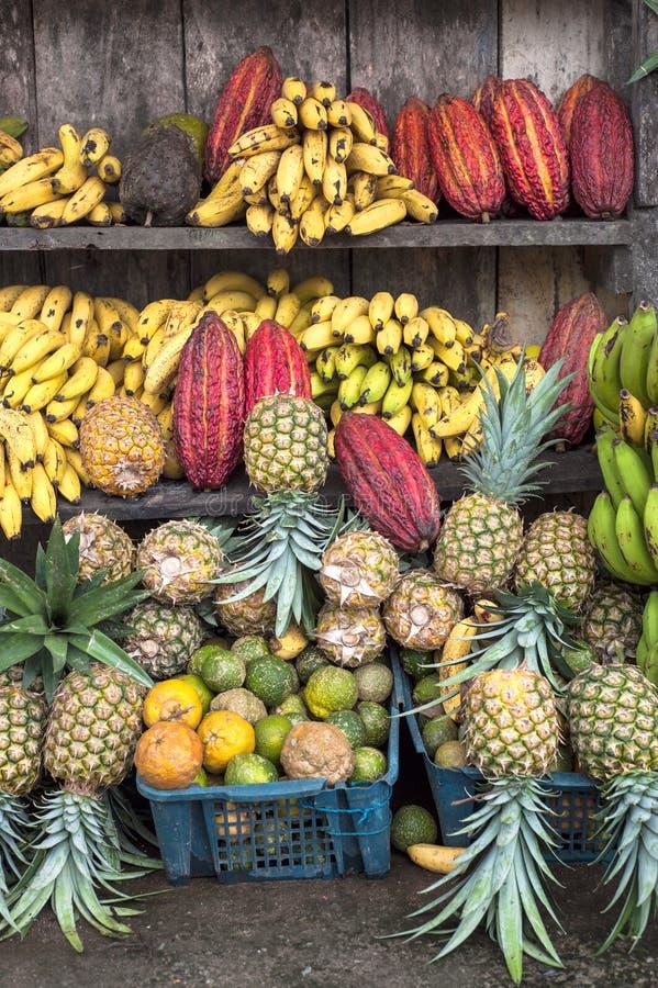 Kakao otaczający innymi tropikalnymi owoc obrazy royalty free