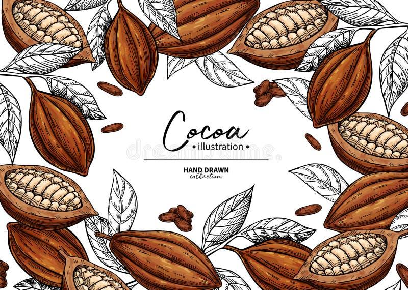 Kakao rama Wektorowego superfood rysunkowy szablon Owoc, liścia i fasoli rytownictwo, Organicznie zdrowy jedzenie ilustracji