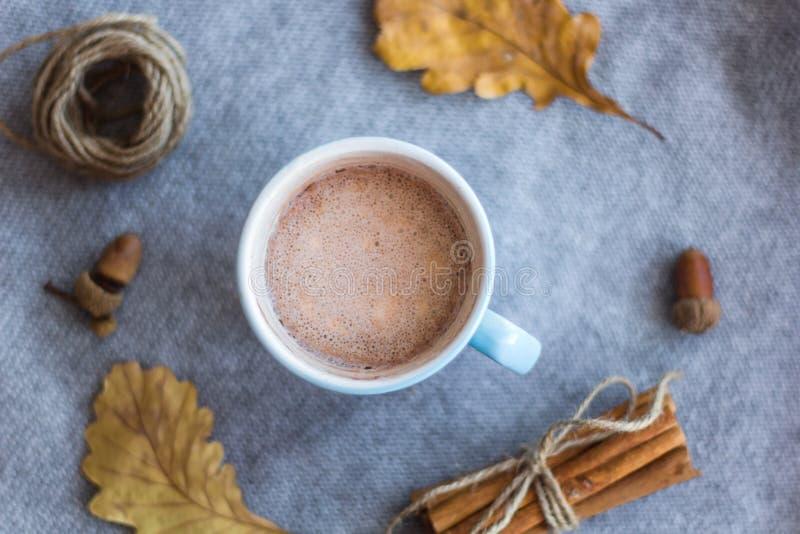 Kakao Schalen- und atumnblätter lizenzfreie stockfotografie