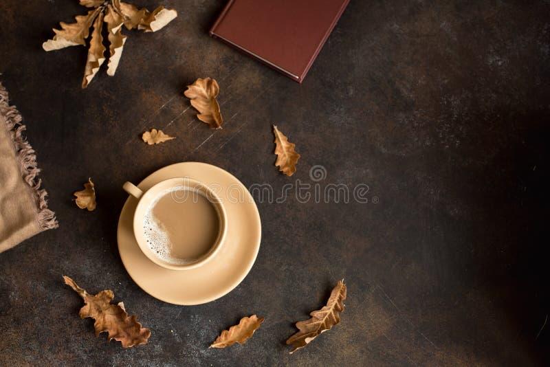 Kakao und Herbstlaub stockbilder