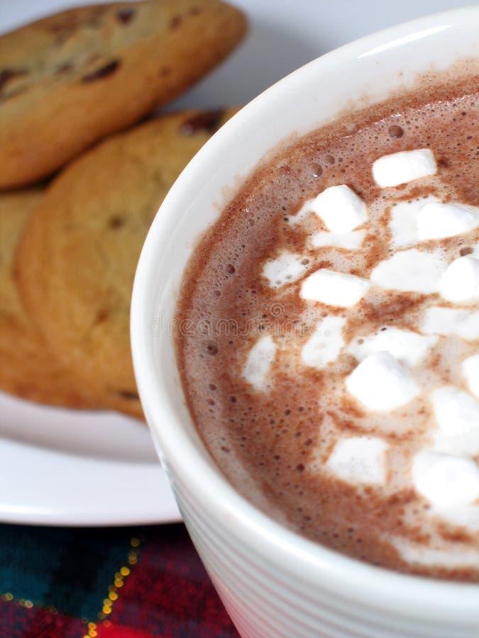 Kakao und Plätzchen stockfotos
