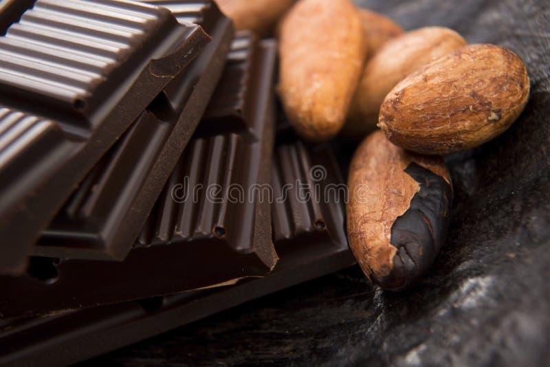 Kakaobönor med mjölkar choklad royaltyfri bild
