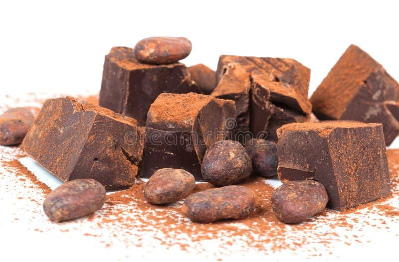 Kakaobönor och choklad arkivbild