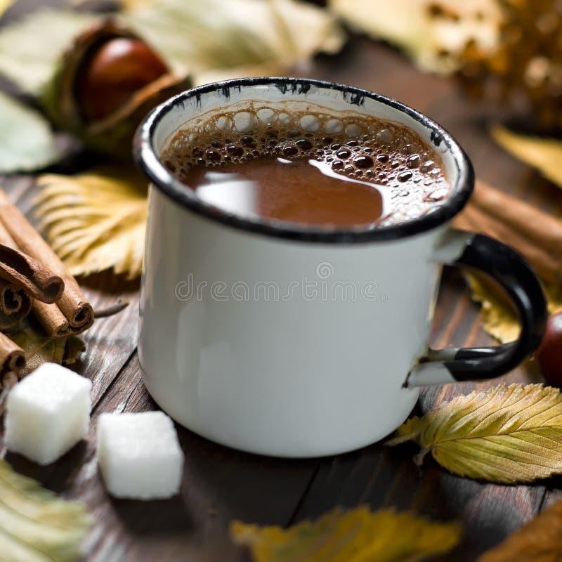 Kakaodrink royaltyfria foton