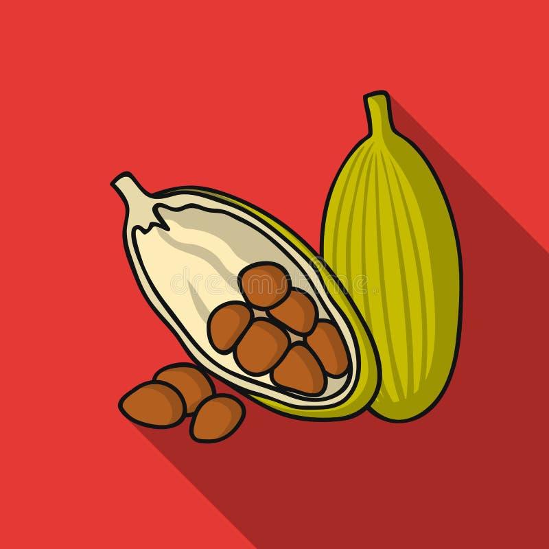 Kakaofruchtikone in der flachen Art lokalisiert auf weißem Hintergrund Kraut eine Gewürzsymbolvorrat-Vektorillustration lizenzfreie abbildung