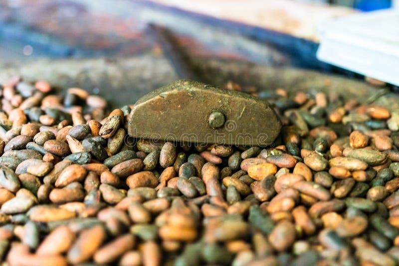 Kakaokonzept mit rohen, geschälten und zerkleinerten Kakaobohnen, die traditionell in El Salvador geröstet werden lizenzfreie stockfotos