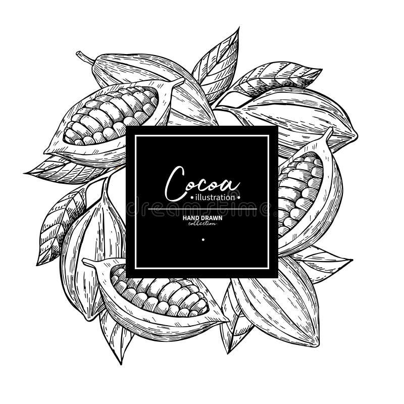Kakaorahmen Vektor superfood Zeichnungsschablone Frucht, Blatt und stock abbildung