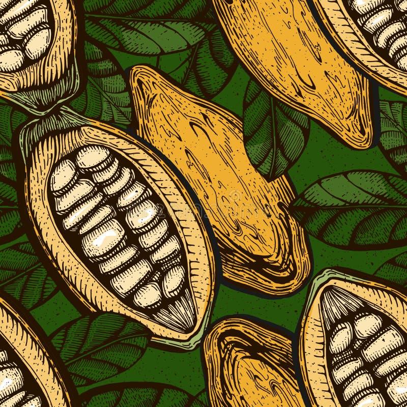Kakaowe czekoladowe fasoli owoc ilustracja wektor