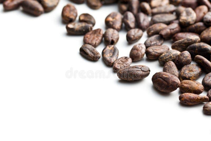 Kakaowe fasole zdjęcie stock