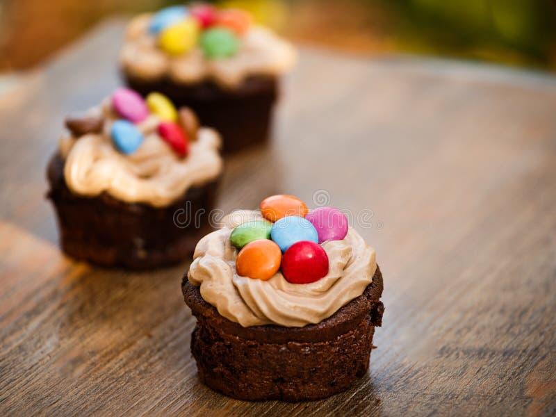 Kakaowi muffins i barwioni sprigs obraz stock