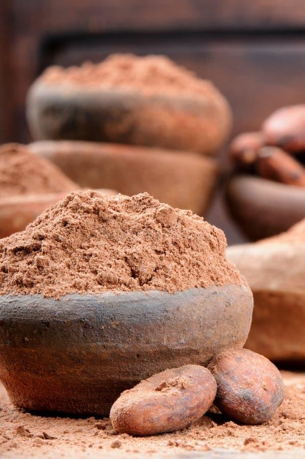 kakaowy fasola proszek fotografia stock