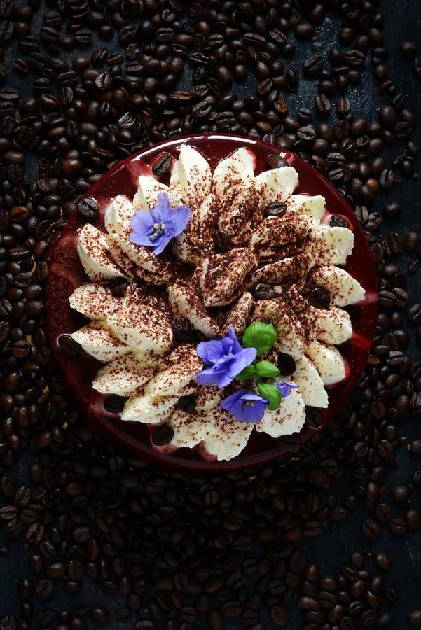 Kakatiramisu i chokladglasyr med mascarponekräm och som dekorerar med kaffebönor och violets royaltyfri bild