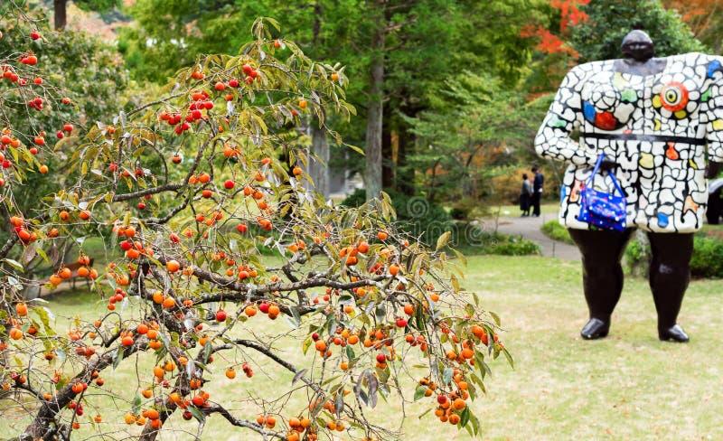 Kaki mûr en parc national de Hakone, Japon Avec l'orientation sélectrice photo stock