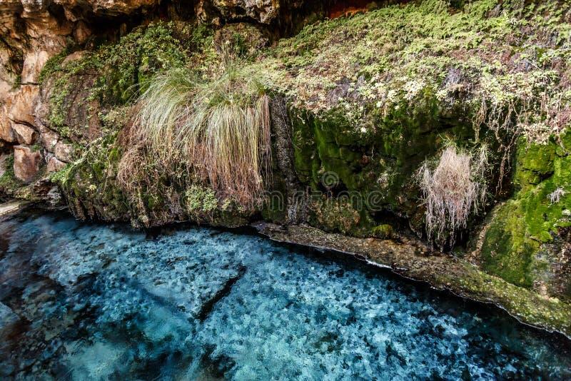 Kaklik jama w Denizli obrazy royalty free