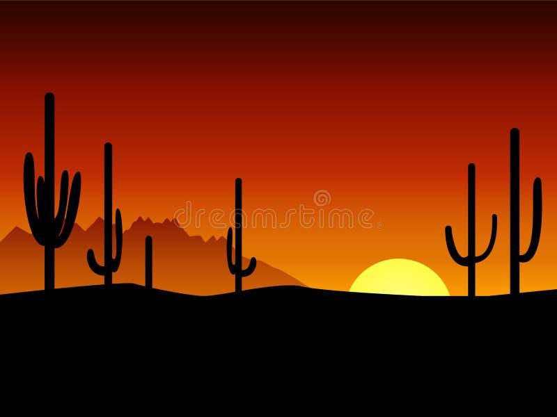 kaktusökensolnedgång arkivfoton