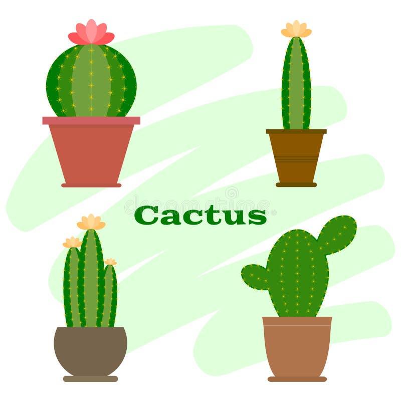 kaktus fotografia stock