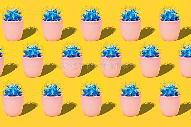 Kaktus Art Fashion Design Kakturs i för sommarstilleben för keramisk kruka minsta begrepp Blått neonlynne på orange bakgrund arkivbilder
