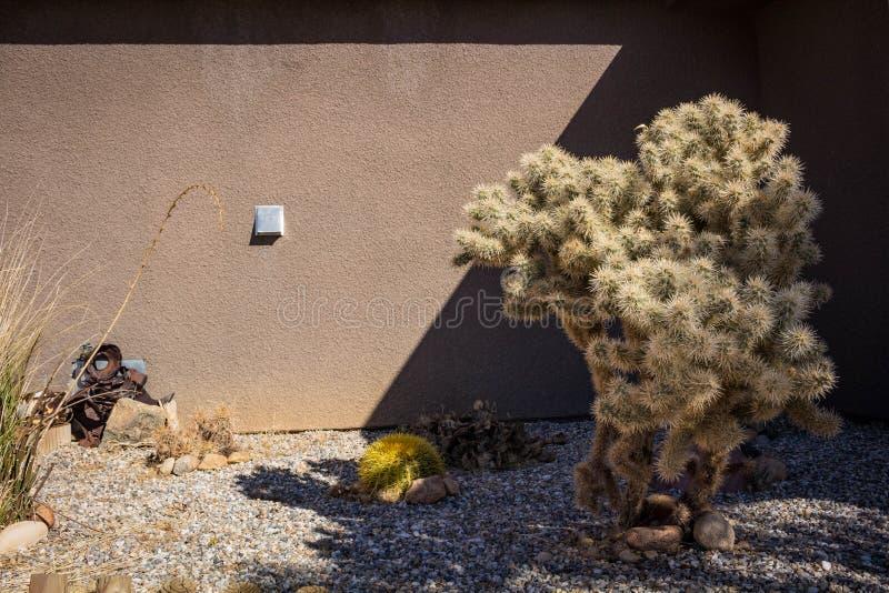 Kaktus domem obrazy stock