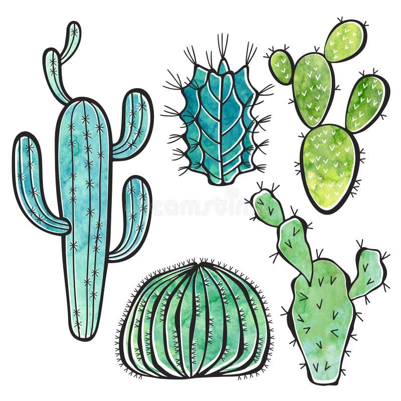 Kaktus getrennt auf weißem Hintergrund Gezeichneter Satz I des Aquarells Hand stock abbildung