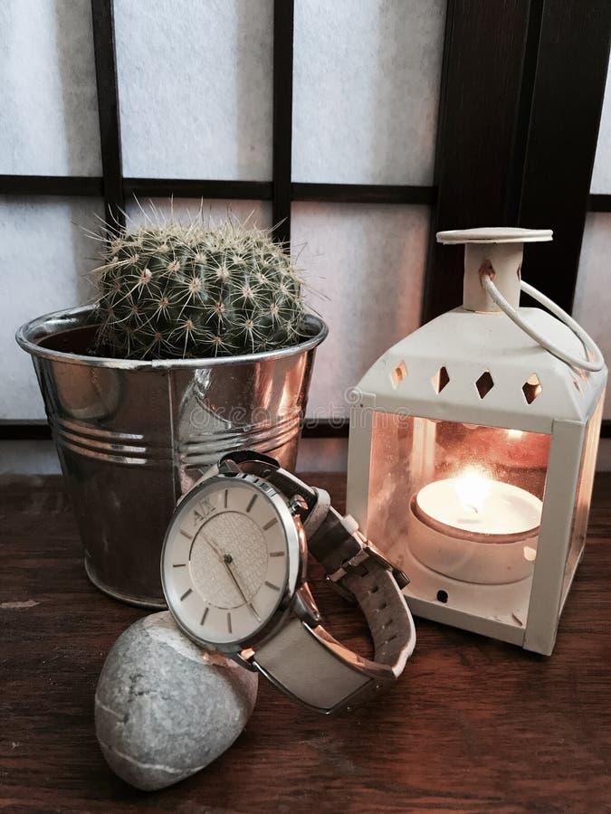 Kaktus i świeczka zdjęcie stock