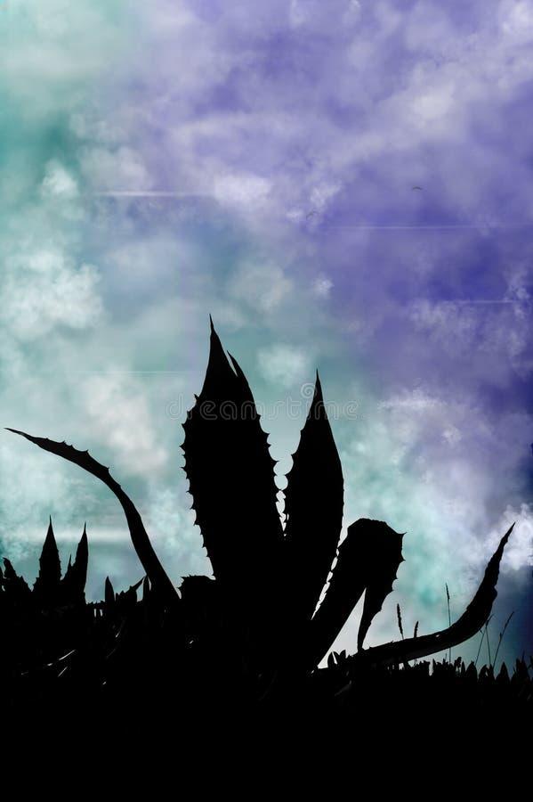 Kaktus-Schattenbild stockbilder