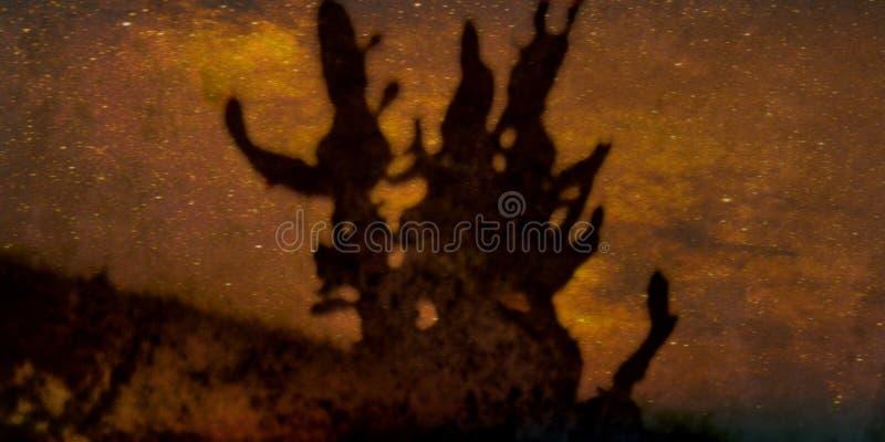 Kaktus-Schattenbild mit Universum lizenzfreies stockbild