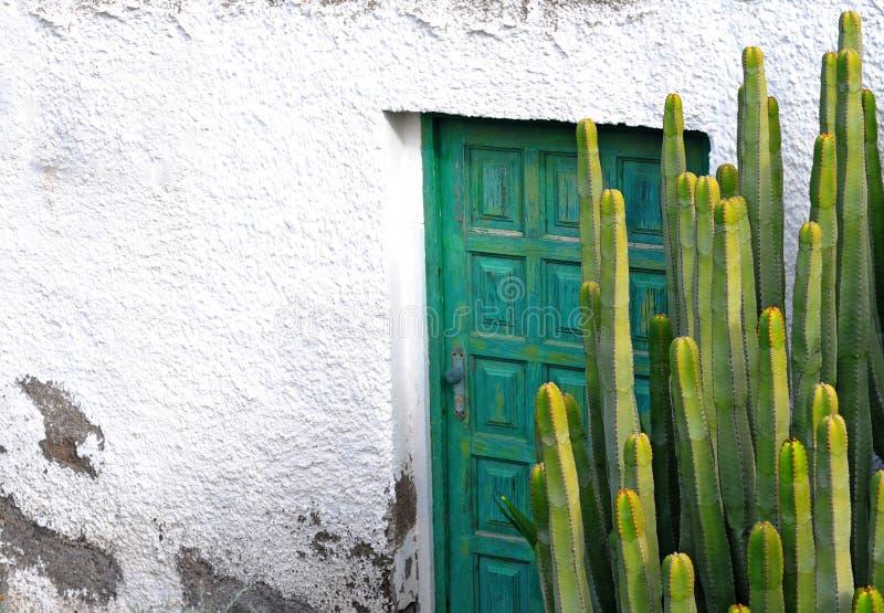 Kaktus und alte Holztür stockfotografie