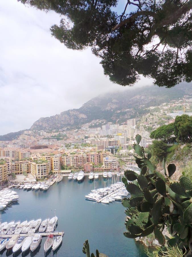 Kaktus und Panoramablick Frankreichs Monaco über Hafen stockfoto