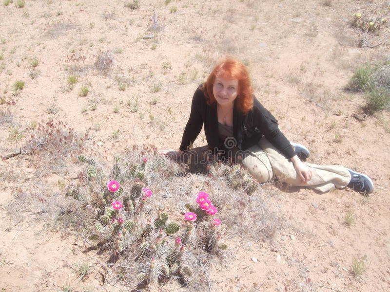 Kaktus w górach kwitnąć zdjęcie royalty free