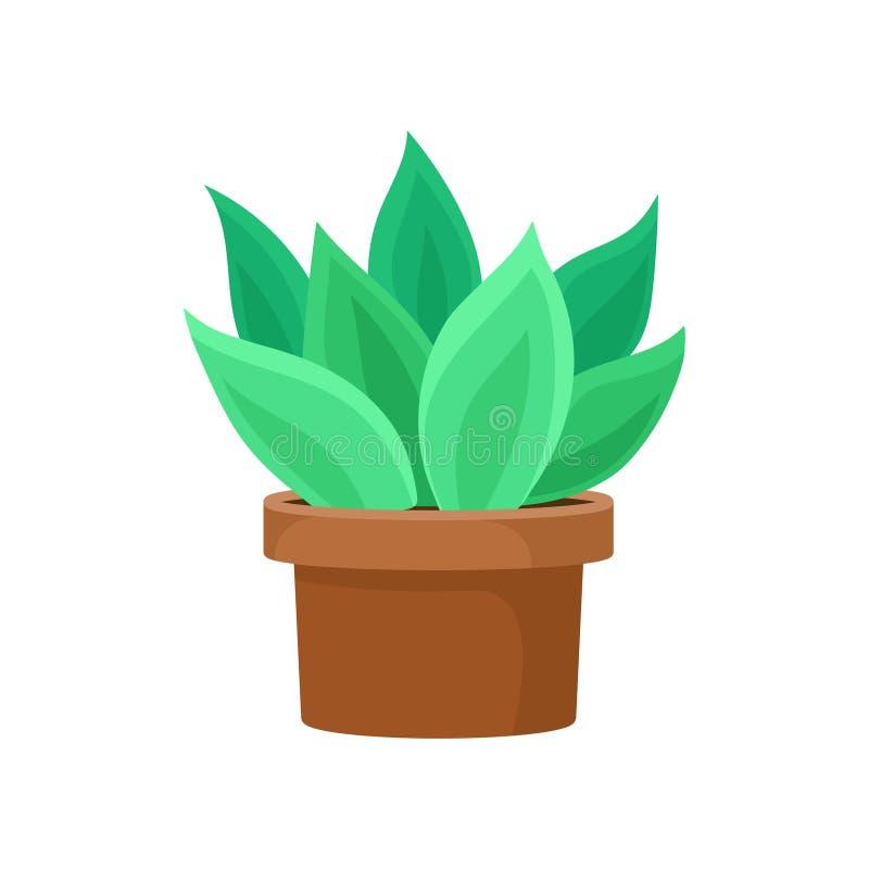 Kaktus z jaskrawym - zieleń opuszcza w brown ceramicznym garnku Tłustoszowata roślina dla domowego wystroju Płaska wektorowa ikon royalty ilustracja