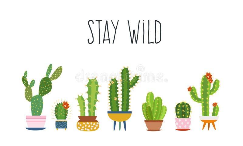 Kaktusaffisch Växter för kakturs för suckulentkakturs skissar exotiska den moderiktiga typografislogan, design för blommakvinnamo royaltyfri illustrationer