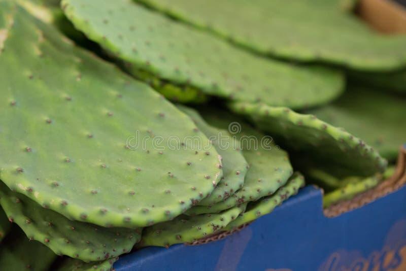 Kaktusblätter an einem Markt stockbild