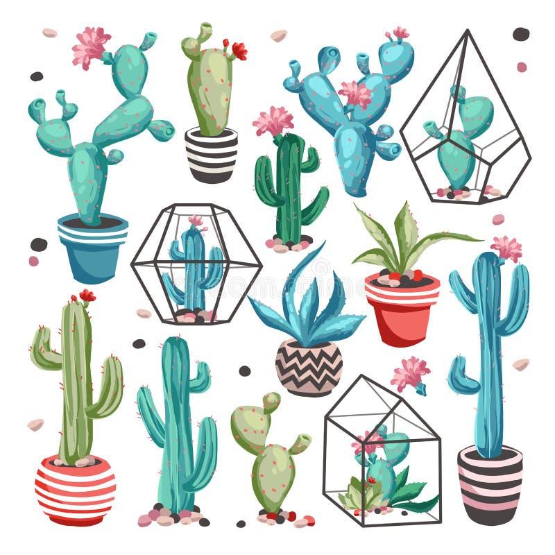 Kaktusblommauppsättning royaltyfri illustrationer