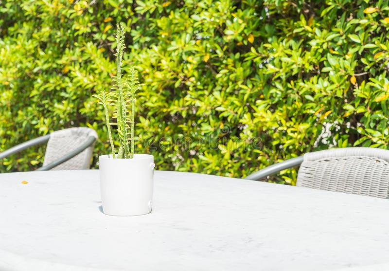 Kaktusdekoration auf Tabelle lizenzfreie stockbilder