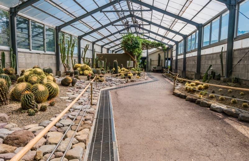 Kaktushus i Yama Jigoku fotografering för bildbyråer
