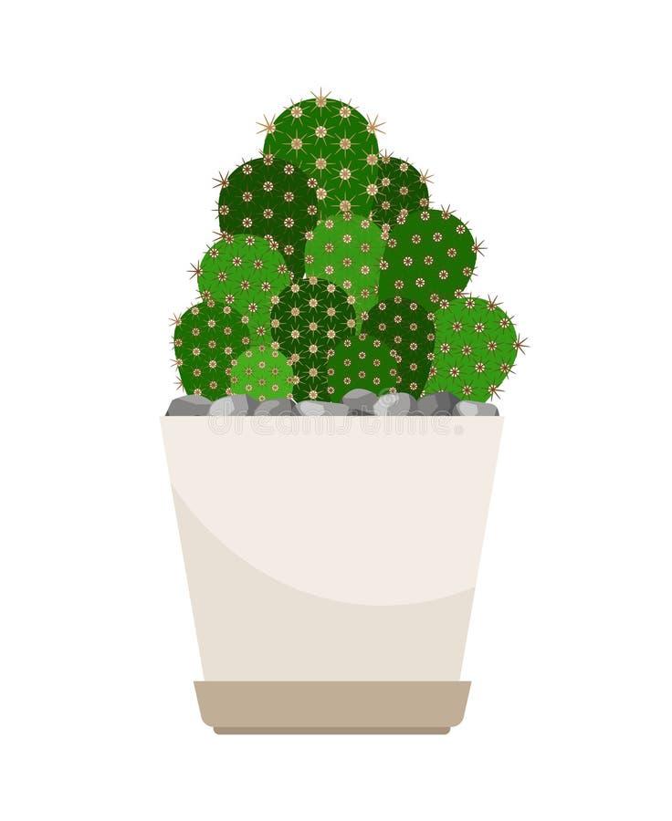 Kaktushusväxt i den vita blomkrukan royaltyfri illustrationer