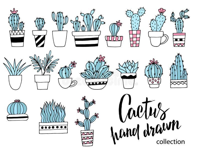 Kaktusklotteruppsättning Räcka den utdragna vektorillustrationen, skissa samlingen av husväxter bakgrundsdesignelement fyra vita  royaltyfri illustrationer