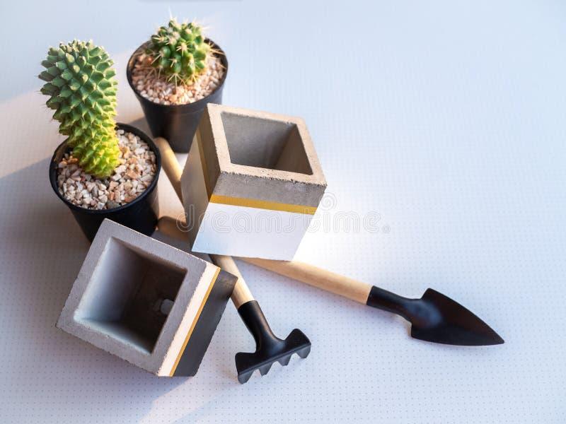 Kaktusowa ro?lina w czarnym plastikowym garnku z pustymi nowo?ytnymi kubicznymi betonowymi plantatorami i ogrodowego narz?dzia se zdjęcie royalty free