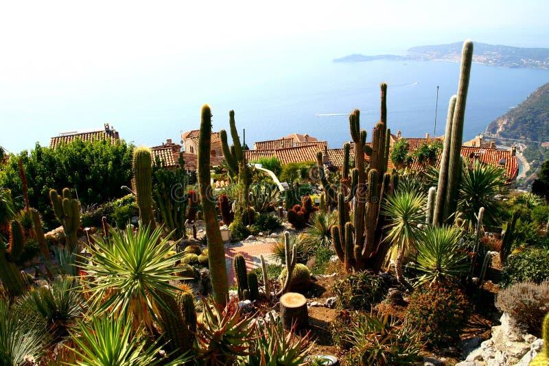 Kaktusträdgård i den Eze byn arkivbilder